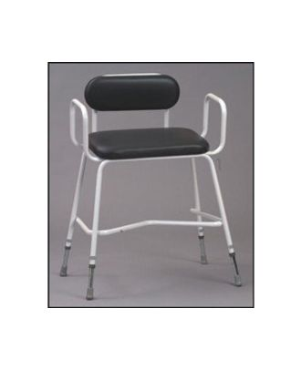 Extra Wide Perching Stool with Arms & Padded Back